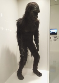 moonwatcher ape costume 2001 spaceodyssey.jpg