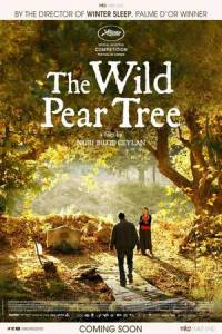 the wild pear tree 2018.jpg